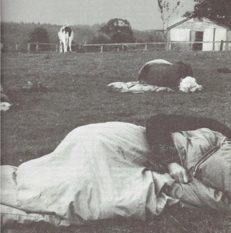 susan hiller, dreaming