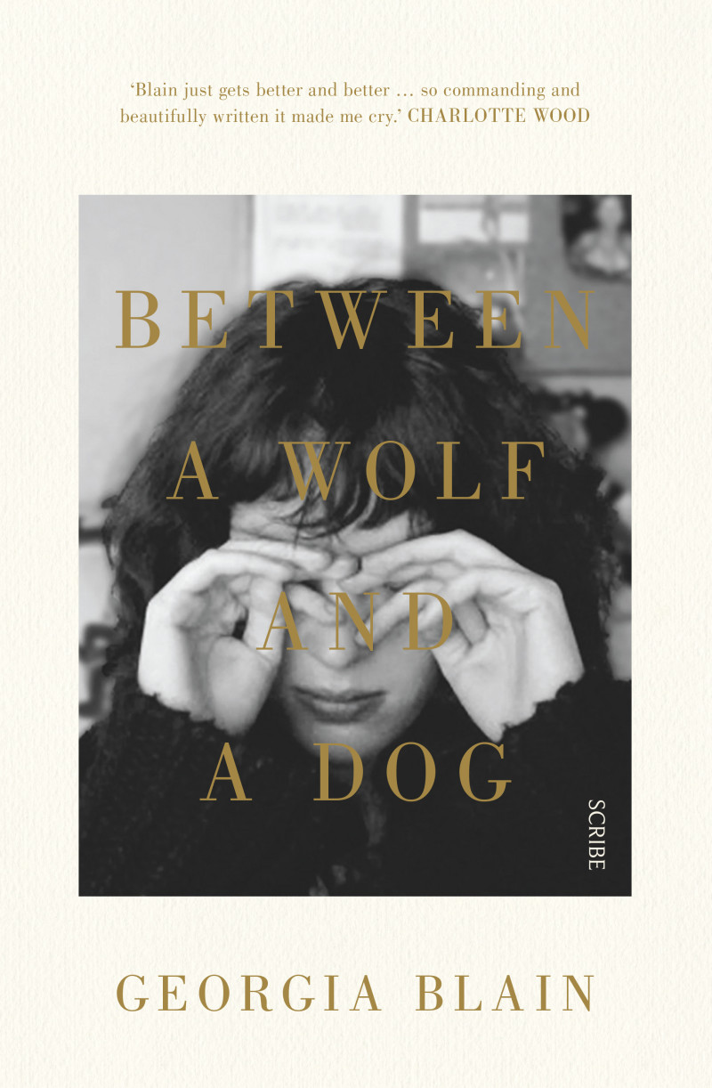 between a wolf and a dog 1